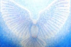 Ascending Dove