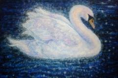 Windermere Swan
