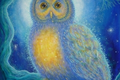 Winter's Owl